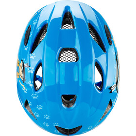 Alpina Ximo Helmet Barn indian